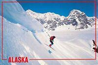 Ski Skiing Skier ALASKA MT DENALI NATIONAL PARK POSTCARD