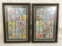 Vintage Cigarette Cards Complete Full Set Garden Flowers Framed Mounted Pictures