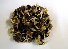 Wunderbaum Moringa oleifera Baum der Unsterblichkeit Samen Saatgut Qualität