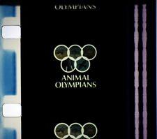 16mm film: Animal Olympians