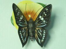 Franklin Mint MANGROVE SKIPPER Butterflies of the World - 6 Photos Butterfly