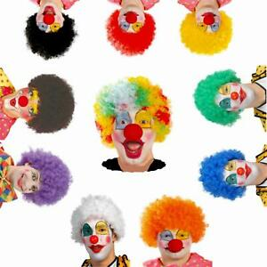 Adult Various Coloured Rainbow Circus Curly Afro Clown Wig Halloween Fancy Dress