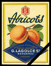 French Antique Alcohol Label: Vintage Fruit Liquor Abricots G. Lagolces