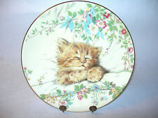 ~ ROYAL WORCESTER CAT NAP LIMITED EDITION PLATE KITTEN CLASSIC YELLOW MULTICOLOR