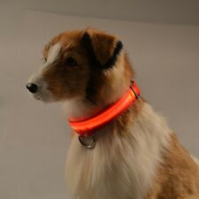USB Rechargeable LED Dog  Light Up Safety Collar Night Glow Adjustable Bright