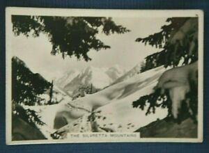 SILVRETTA MOUNTAINS  Switzerland   Vintage Photo-card