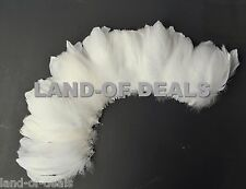 100+ White / off white goose nagoire feathers strung bulk wholesale feather 1 ft