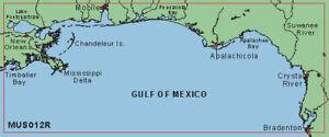 Garmin BlueChart Tampa FL to New Orleans LA MUS012R Data Card Marine Chart Chip