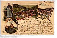 Gruss aus Teinach AK 1898 Mehrbild Litho Schwarzwald Baden-Württemberg 1506112*