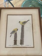 """VINTAGE M.R. Bebb Framed """"Goldfinches and Mullelins"""" Color Etching #100 of 150"""