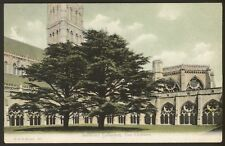 Wiltshire. Salisbury. Salisbury Cathedral, The Cloisters - Vintage Postcard