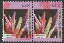 ECUADOR 1998 800 S. Bananenblüte, gest. Kab.-Paar, ABART: linke Marke m weißer