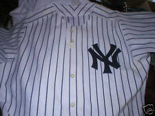 2006 TONY PENA NY Yankees Steiner LOA game used worn home jersey