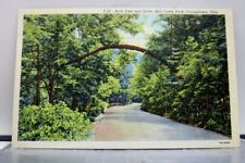 Ohio OH Youngstown Mill Creek Park Arch Tree Drive Postcard Old Vintage Card PC