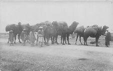 POSTCARD   PAKISTAN   KHYBER  PASS  Kabul and  Persian  Camels Returning    RP