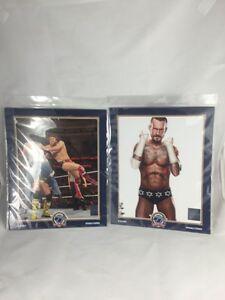 WWE Wrestling LICENSED PHOTO FILE 8x10 CM Punk Lot Of 2