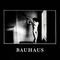 Bauhaus - IN The Flat Field Nuevo CD