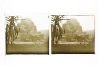 Parigi Zoo Francia Foto n46L7-21 Placca Lente Stereo Vintage