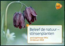 NEDERLAND: PZM 591 A/B BELEEF DE NATUUR. (STINSENPLANTEN)