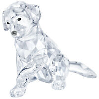 Swarovski Crystal Creation 5399004 Labrador Mother RRP $229