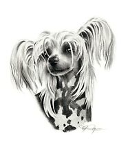 Chinese Crested Dog Pencil Drawing 8 x 10 Art Print by Artist Dj Rogers w/Coa