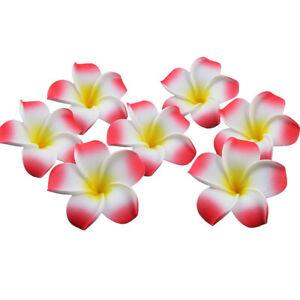 20-100x Artificial Hawaiian Frangipani Plumeria Foam Head Flower Wedding Decor