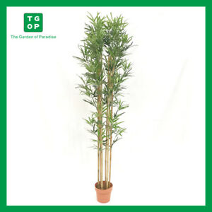 Artificial Bamboo 2m High Fake