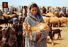 BF291 mercado de ganado maroc lamb chavre goat morocco africa