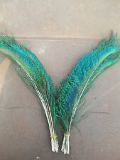Beautiful! 10 pcs natural  peacock feather free shipping 12-14 inches 30-35 cm!