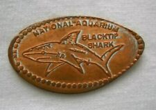 National Aquarium elongated penny MD USA cent Blacktip Shark souvenir coin