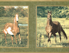 COUNTRY 3 HORSES IN GOLD EDGE FRAMES GREEN BACK 9 ' inch  Wallpaper bordeR Wall