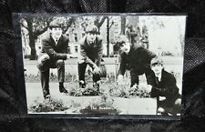 "THE BEATLES John Paul George Ringo Black & White Postcard 5 1/2"" x 3 3/4"""