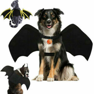 Halloween Pet Bat Wings Costume Dog Cat Puppy Bat Cosplay Clothes Outfit Dress