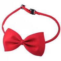 Cravatta a Farfalla Necktie Bow Papillon Rosso per Cani Gatti Animali Domestici
