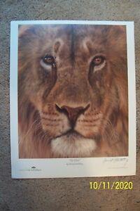 "David Stribbling ""Up Close"" Poster -"