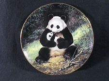 The Panda, Last of Their Kind:Endangered Series,Will Nelson,Bradex, Coa