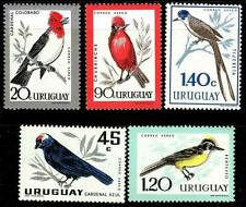 URUGUAY 1962 endemic BIRDS SC#C247-51 Mint NH CV$5.50