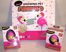 4 HATCHING GROWING FLAMINGO EGGS toy bird novelty egg play raise a pet new