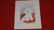 "VINTAGE ORIGINAL WATERCOLOR BICHON FRISE 8""X10''"