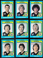 1980 Scanlens Richmond Tigers Team Set 14 Cards Near Mint Condition