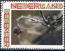 Nederland Persoonlijke. decemberzegel 2777 2010-2011 eigen invulling Wintersfeer