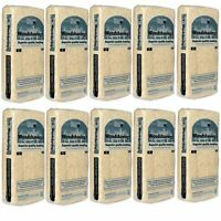 Superior Quality Dust Extracted Kiln Dried Small Animal Woodshaving 1KG