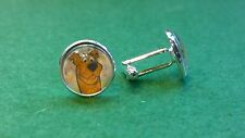 Scooby Doo style Glass Domed cufflinks, Mystery Machine cartoon