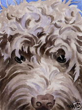 LABRADOODLE ART Print Watercolor Painting 11 X 14 Signed by Artist DJR w/COA