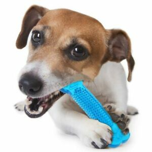 Dog Tooth Cleaner Toys Pet Stick Molar Toothbrush Dental Chew Care Doggy Puppy