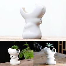 Cute Animal Succulent Planter Pot Ceramic Cactus Planter Pot Flower Pot Plant Po