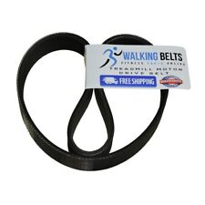 Vision T9550 S/N: TM353 Simple TM355 Treadmill Motor Drive Belt + Free 1oz Lube