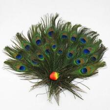 30pcs beaucoup réel naturel paon Yeux plumes de la queue 8-12 pouces ZH