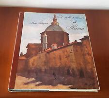 BORGIOTTI Mario, IL VOLTO PITTORICO DI PAVIA - 53 Tavole Volume numerato