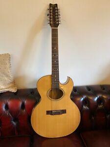 Washburn 12 String Birds Eye Maple Electro-Acoustic Very Rare EA20 40 Woodstock